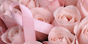 Pink Roses and Pink Ribbon Medium